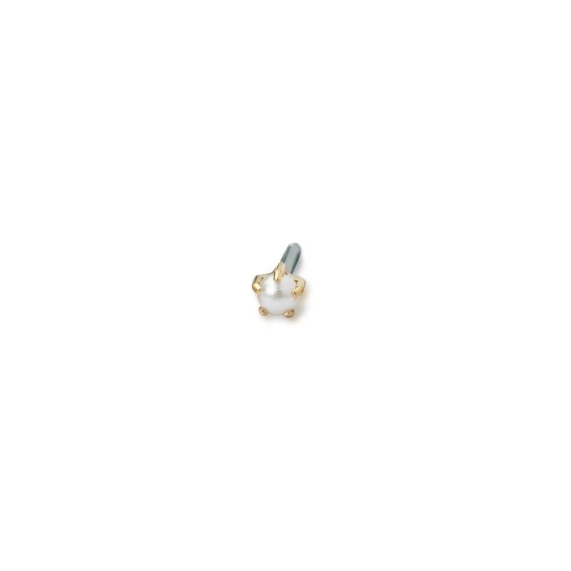 Blomdahl -Tiffany 4 mm Pearl - złoty tytan medyczny