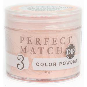 Perfect Match Powder DIP PMDP169 proszek do manicure tytanowego 42g