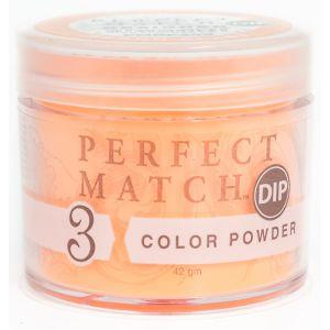 Perfect Match Powder DIP PMDP202 proszek do manicure tytanowego 42g