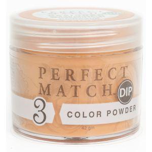 Perfect Match Powder DIP PMDP205 proszek do manicure tytanowego 42g