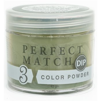 Perfect Match Powder DIP PMDP210 proszek do manicure tytanowego 42g